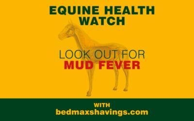 WARNING: Mud Fever