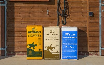 Spring Clean your Stable